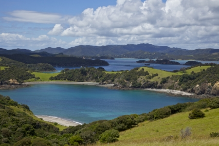 Landscape view of the Bay of Islands in New Zealand
