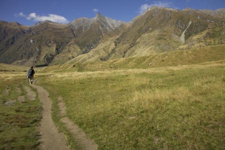 Rob Roy Track on the South Island of New Zealand near Wanaka Stock Photo