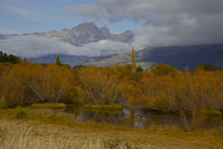 Fall foliage in Glenorchy New Zealand among the Southern Alps