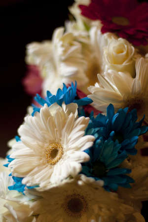 gerber daisy and rose bouquet Stock Photo