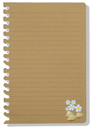 brown note paper in shellfish style Stock Photo - 7886612