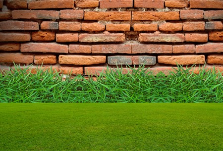 old brick wall behind the green grass photo