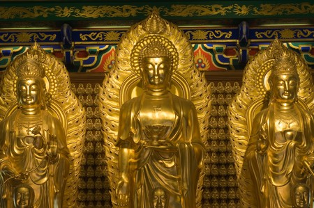 image of buddha in chinese temple in Thailand,Kammalawat Dragon temple Stock Photo - 8144445