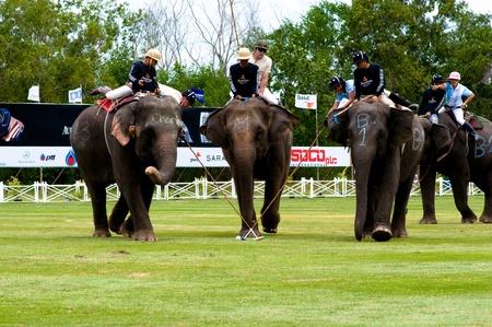 elephant polo games 2011,Hua Hin Thailand