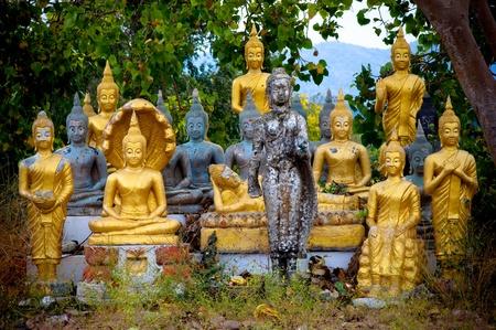 far eastern: many Buddhist image in Thailand