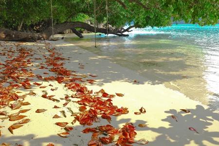 Surin island national park in Thailand Stock Photo - 12638606