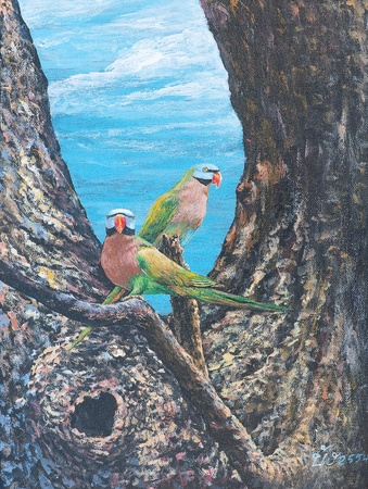 Oil painting on canvas - parrots on the branch Stock Photo - 12836771