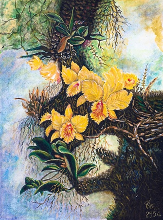 Oil painting on canvas - yellow forest orchids photo
