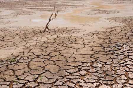 dry earth in the dry season in Thailand Stock Photo
