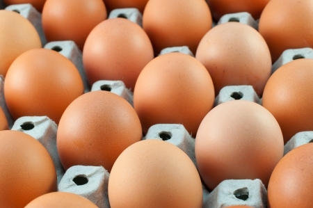 close-up eggs in the package  photo