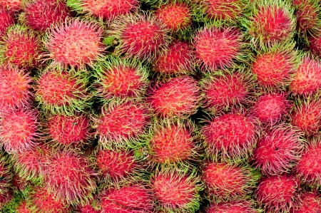 group of red rambutan,Thai fruit Stock Photo - 14387502