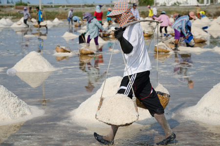 salted falm labors in Thailand