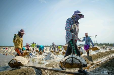 labourers: Salted farm labourers in Thailand