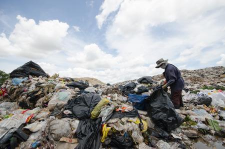 scavenger on big garbage heap photo
