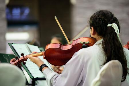 violinista: Mujer joven violinista