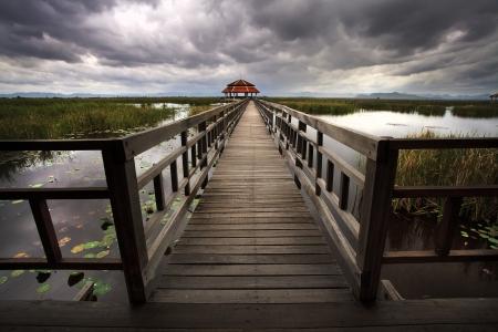 Wooden Bridge in lotus lake at khao sam roi yod national park