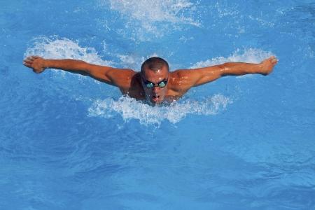 piscina olimpica: Entrenamiento atl�tico nadador en una piscina Foto de archivo