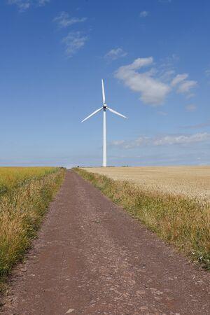 Wind turbine in wheat field under cloudy sky