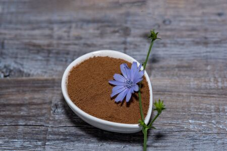 Chicory flower and powder of instant chicory  on wooden background. Cichorium intybus. Reklamní fotografie