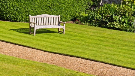 Bench on a green lawn