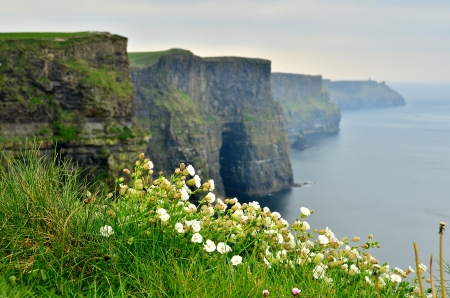 moher: Cliffs of Moher, Ireland
