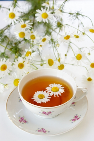 Chamomile tea                   photo