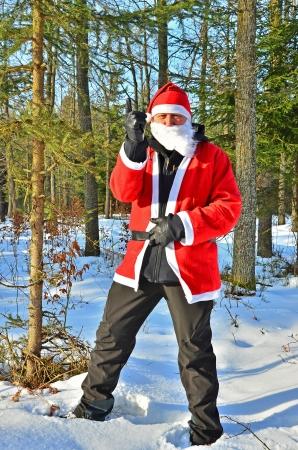 Kerstman in bos
