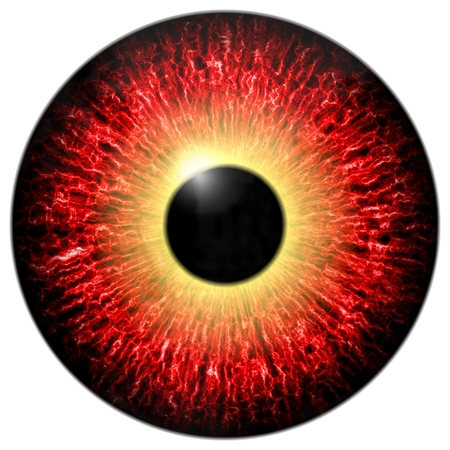 red eye: Red eye isolated element on white background Stock Photo