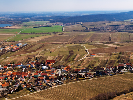 vineyard plain: Village among vineyards in spring aerial photo Stock Photo
