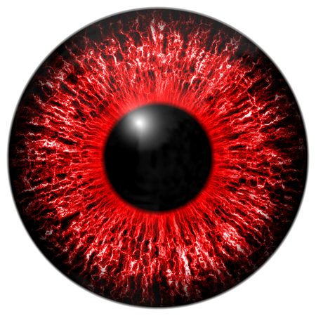 and he shines: Red eye iris isolated element on white background