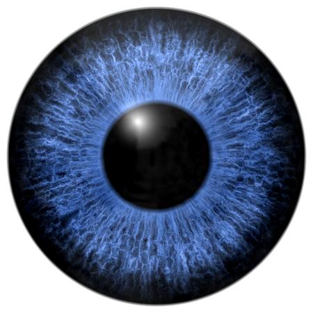 Blue eye iris isolated element on white background