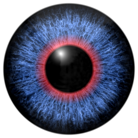 and he shines: Blue - red eye iris isolated element on white background