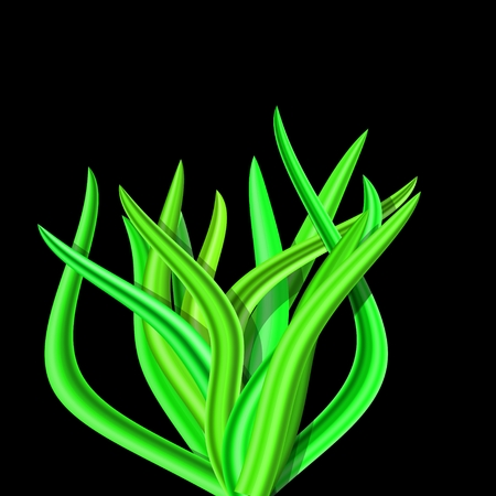 grassy field: Illustration of abstract bright green tussock on black background