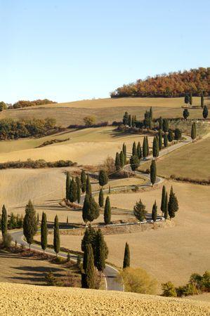 Tuscany landscape Imagens