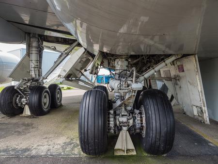 Landing gear of a jumbo jet airliner