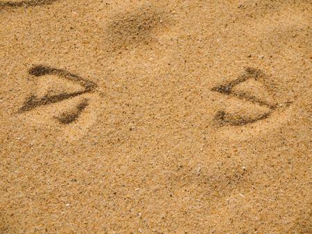 inprint: Bird prints on wet sand of beach