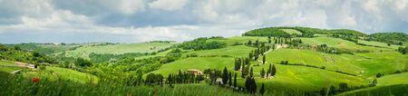 Cypress road near small village of Monticchiello, Tuscany, Italy Stock Photo