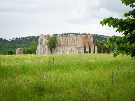 The old abandoned and roofless gothic abbey of San Galgano in Tuscany, Italy