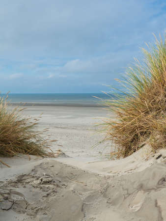 View over the dunes of Ameland, Holland