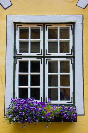 Beautiful window with flower box and shutters photo