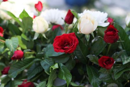 wedding photography: Flowers for wedding photography church. Stock Photo