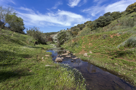 extremadura: image of a small stream in spring in Extremadura in Spain