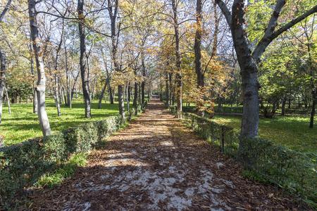 Inside of the Retiro Park in Madrid an autumn day Imagens