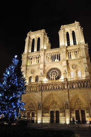 Kathedrale Notre-Dame mit Weihnachtsbaum - Paris, Frankreich