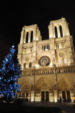 Notre Dame Cathedral with Christmas tree - Paris, France Standard-Bild