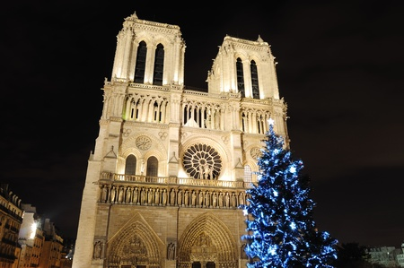Notre Dame Cathedral with Christmas tree - Paris, France Stock Photo