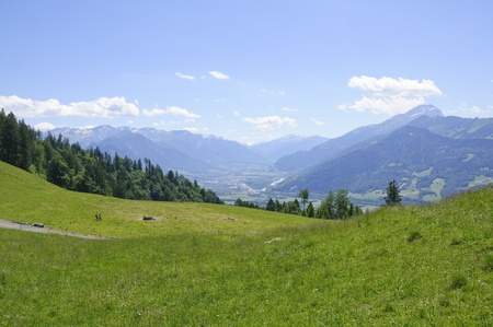 Meadow in Maienfeld, Switzerland