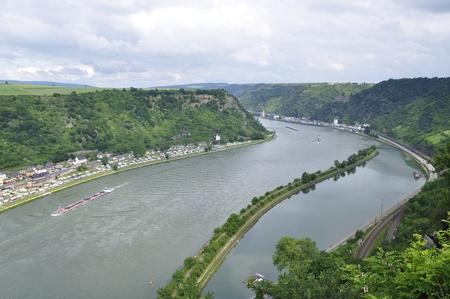 St. Goarshausen und Schloss-Katze im Rheintal in Deutschland