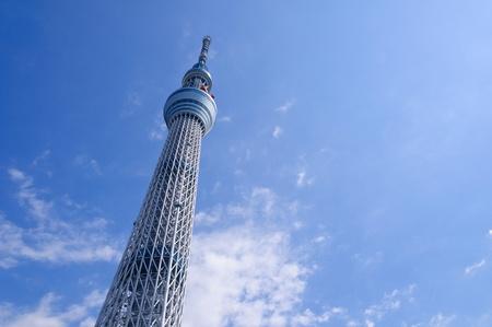 Tokyo Sky drzewo