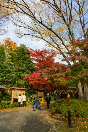 Koishikawa Korakuen Garden in Herbst in Tokyo